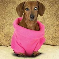 Manta con mangas para perros | BATAMANTA Canina