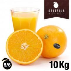 Naranjas Deluxe Lane Late 10 Kg | De Zumo | Calibre 5/6